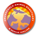 monthly donor compassion button